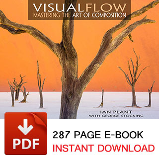 Visual Flow - The E-Book by Ian Plant