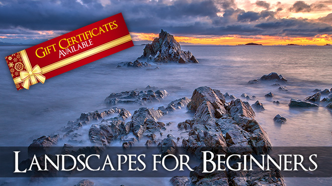 Landscapes for Beginners - Vancouver Island Photography Workshop
