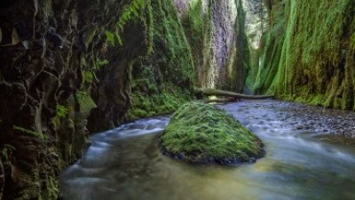 Oneonta Gorge Photo Tips, Oregon