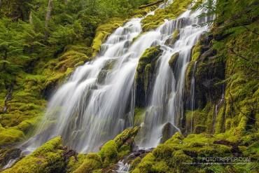 Upper Proxy Falls Photo Tips, Oregon