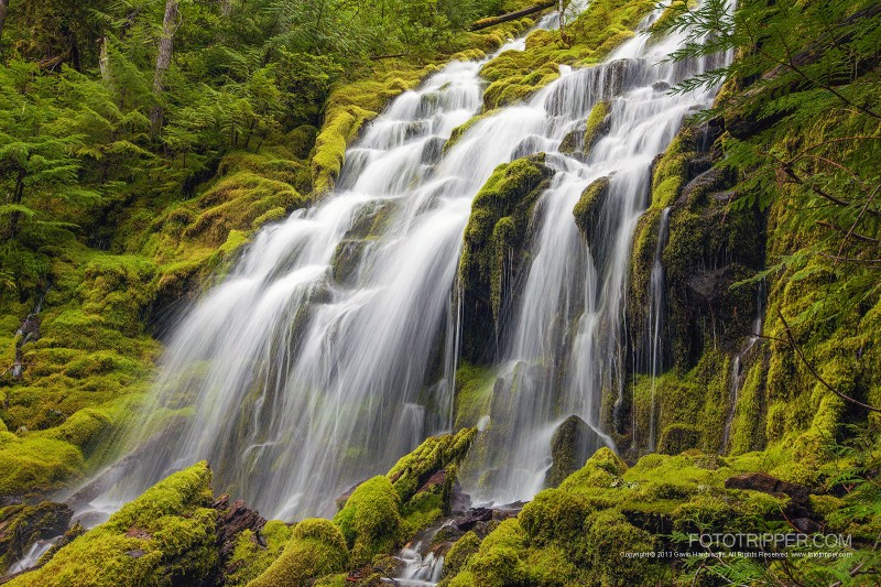 Upper Proxy Falls Photo Tips, Oregon