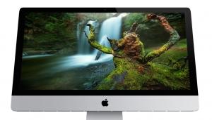 Ferocious Stump - Free Desktop Wallpaper by Gavin Hardcastle