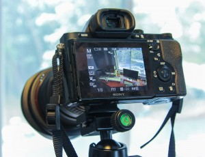 Sony A7r Review - Focus Assist