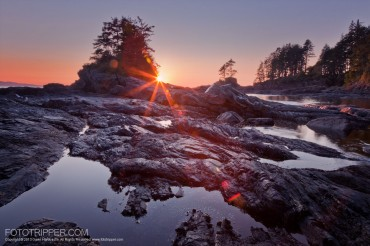 Vancouver Island and Vancouver Photo Workshops