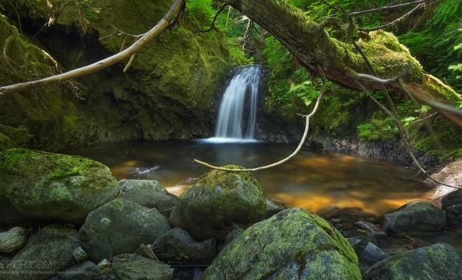 cutthroat-falls-vancouver-island-copyright-gavin-hardcastle.jpg