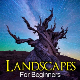 Landscapes for Beginners Photography Workshop - Vancouver Island
