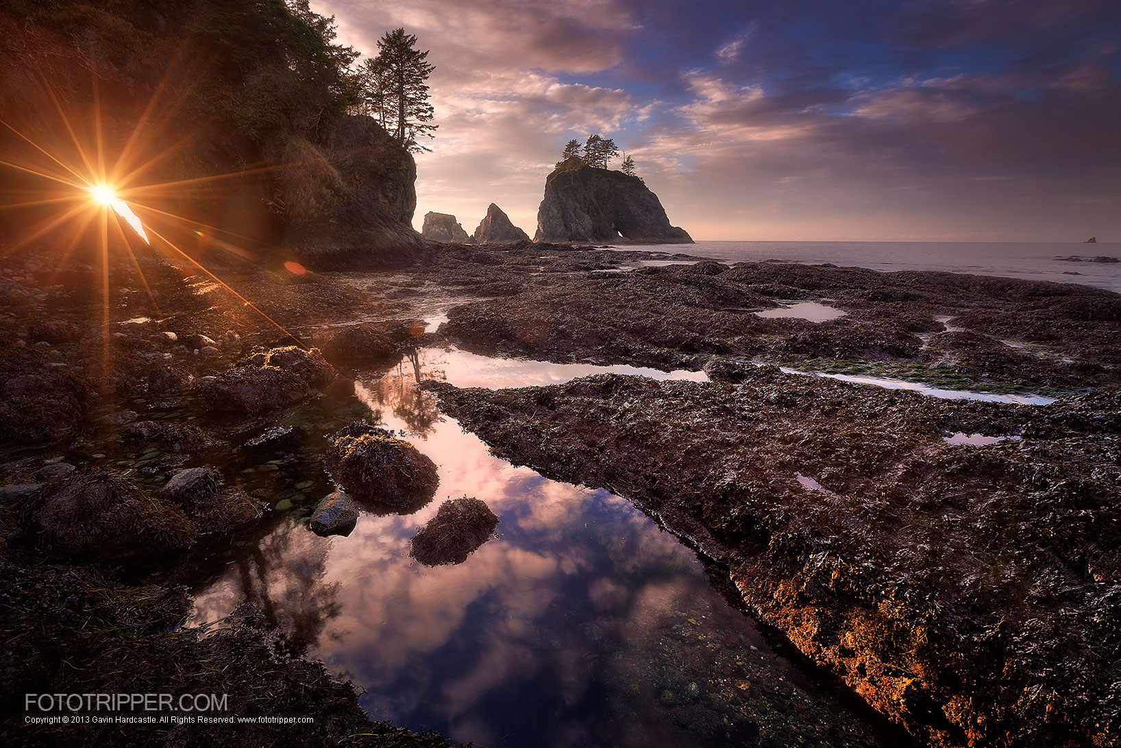 Shi Shi Beach Landscape Photography