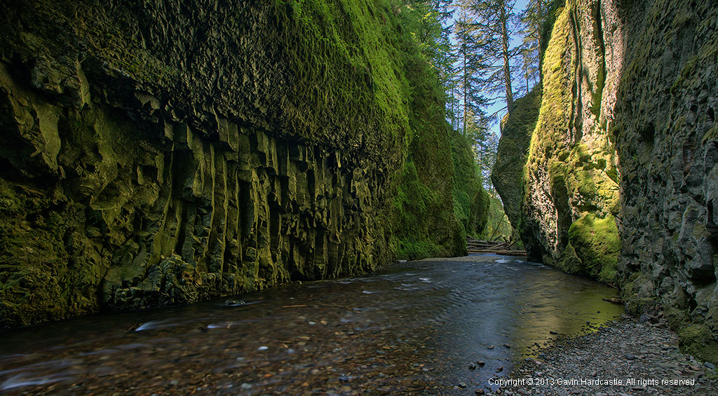 Photograophy Road Trip to Oneonta Gorge.