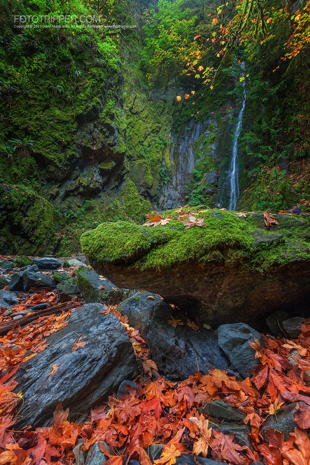 Fall Photo Tips- How to Photograph Autumn Scenes