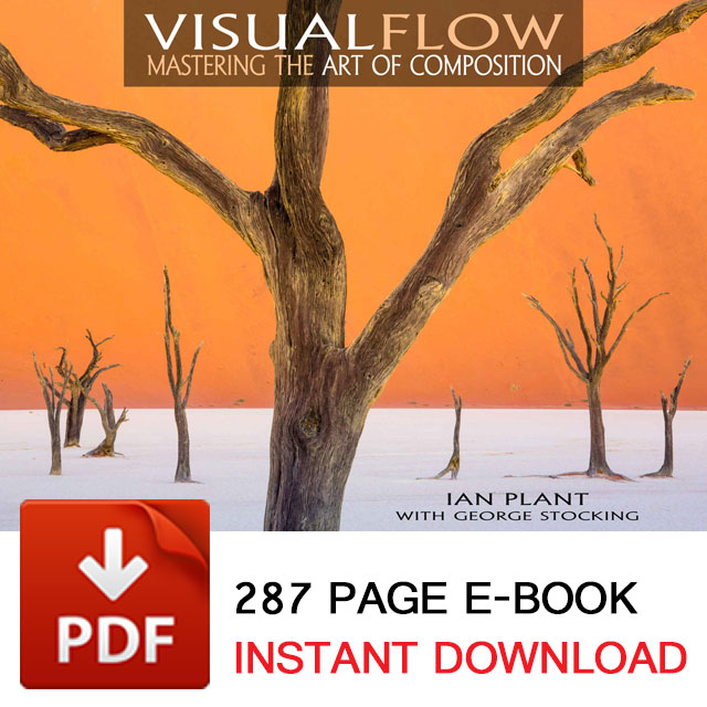 Visual Flow - The Composition Ebook from Ian Plant