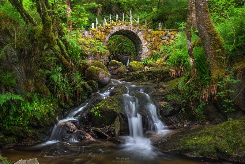 The Fey Realm - Scotland Photography Workshop - Gavin Hardcastle