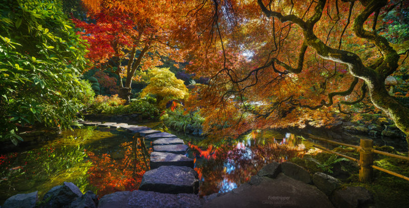 'Bounce Light' - The Butchart Gardens