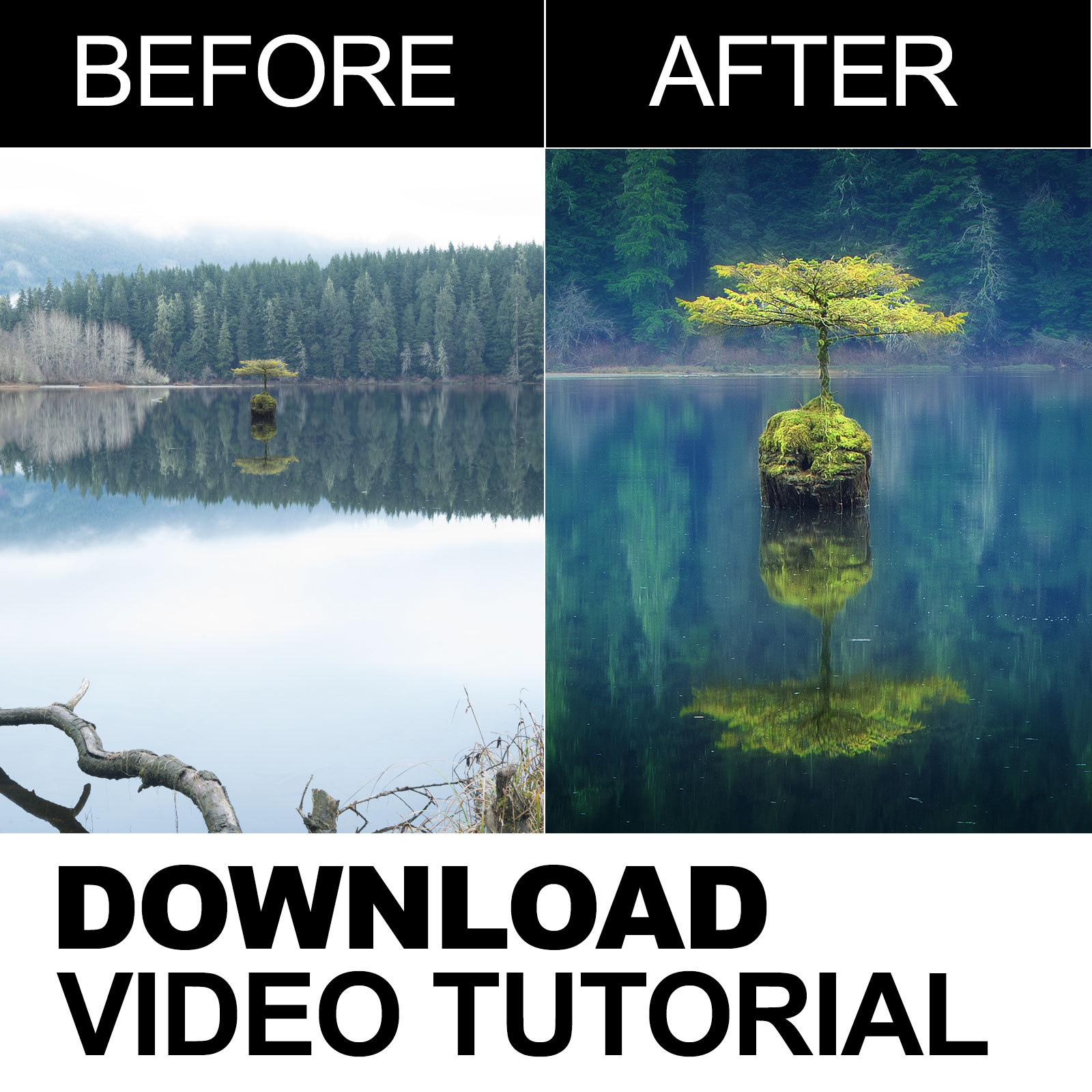 Tenacity - Before and After Photoshop Video Tutorial