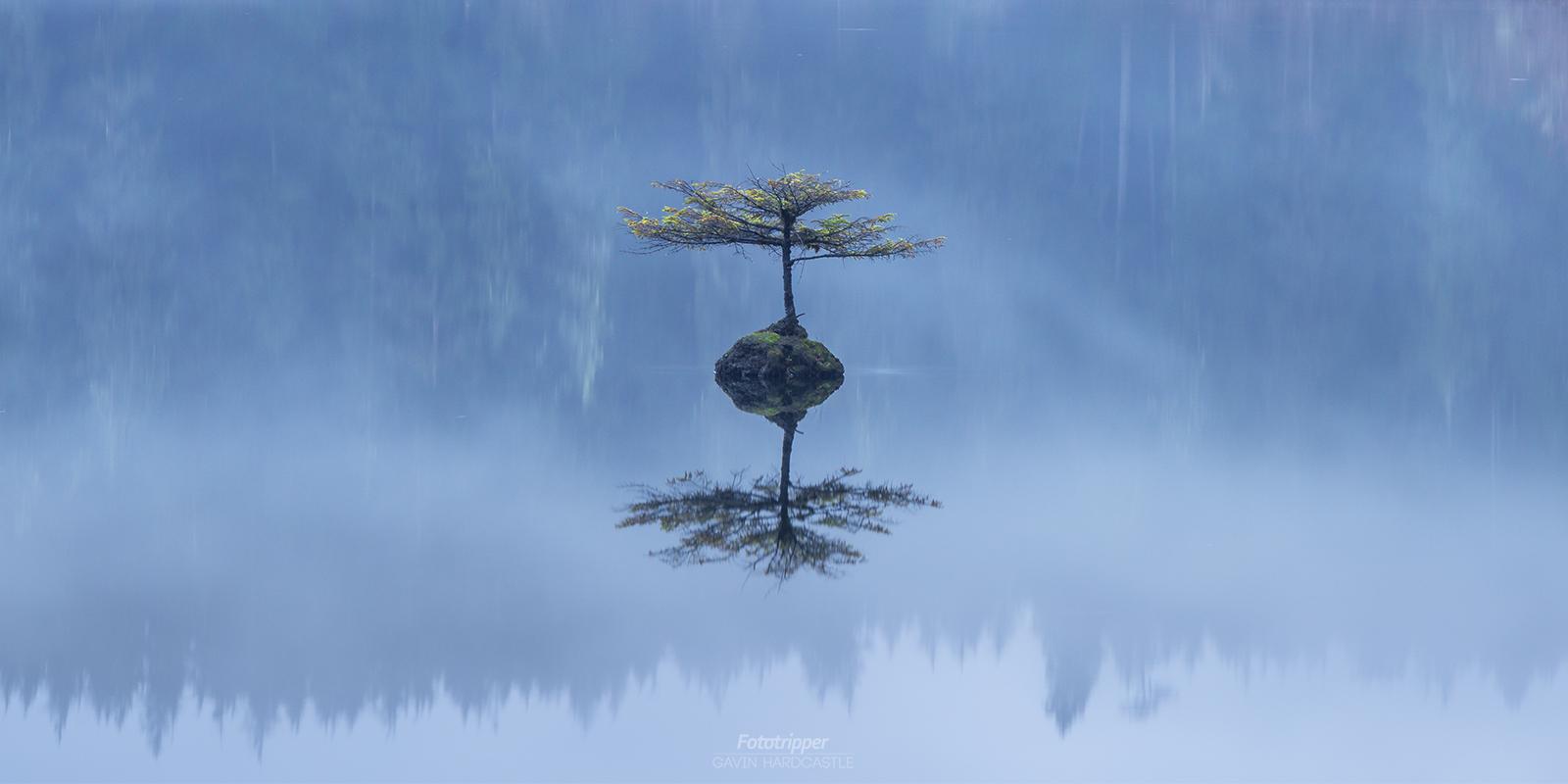 Vancouver Island Photography Workshop