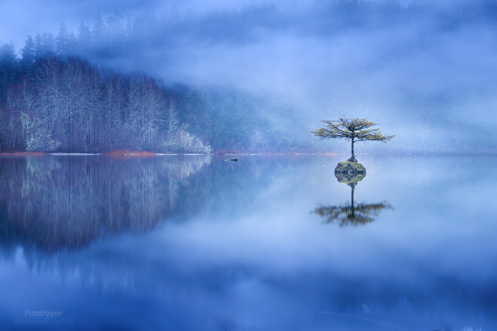 Fairy Lake, Vancouver Island Photo Workshops